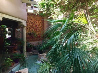 Cousin Mary's beautiful atrium